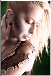 Skinned_03