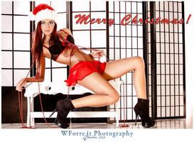 Merry Christmas 2012 by gmesh