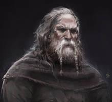 Viking Portrait by ArtofReza