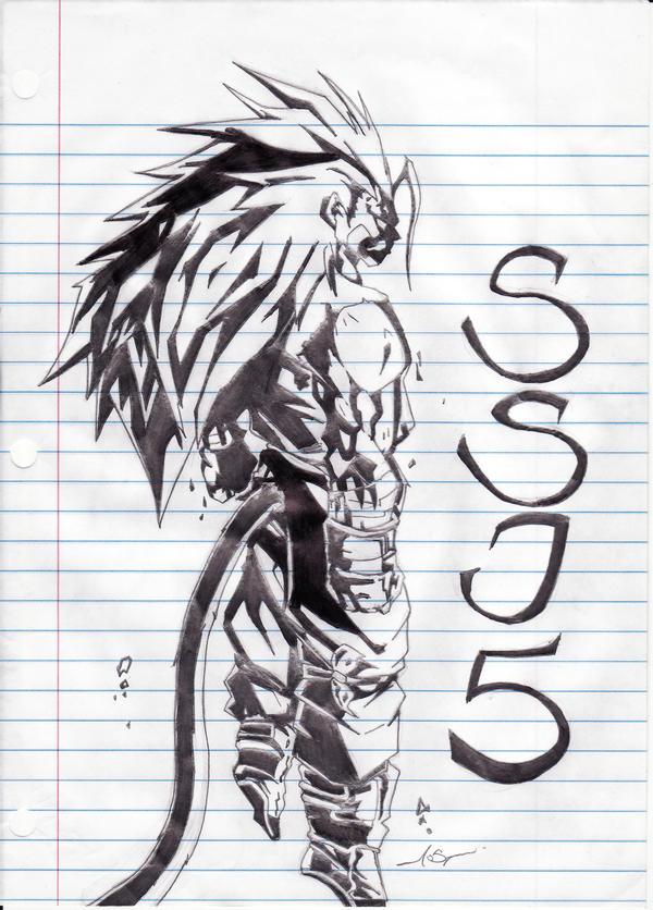 Goku Super Saiyan 5 By Aokp On Deviantart