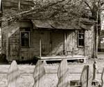 abandoned cajun home
