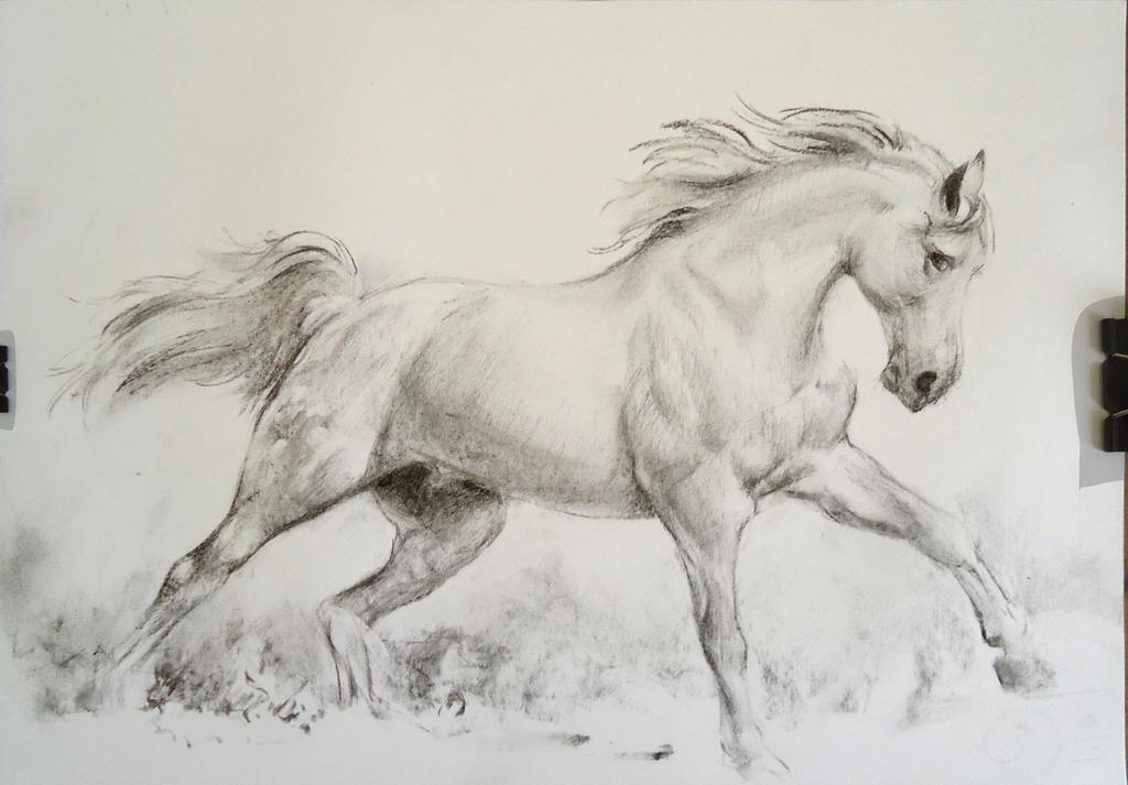 Running Horse Charcoal by loumizhu on DeviantArt