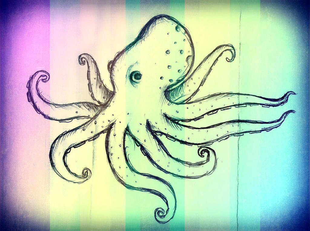 Cephalove The Octopus Visual System