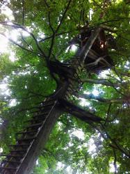 ... tree house something ...
