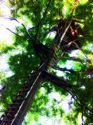 neural treehouse