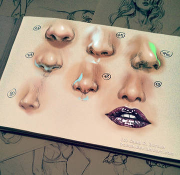 Noses 1