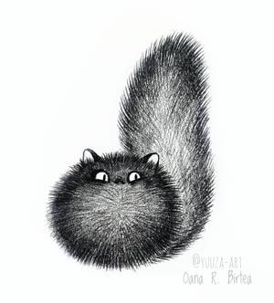 Cat puff
