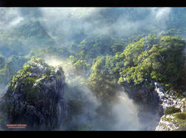 Mist forest by agnidevi