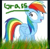 GRASS by Ninji99