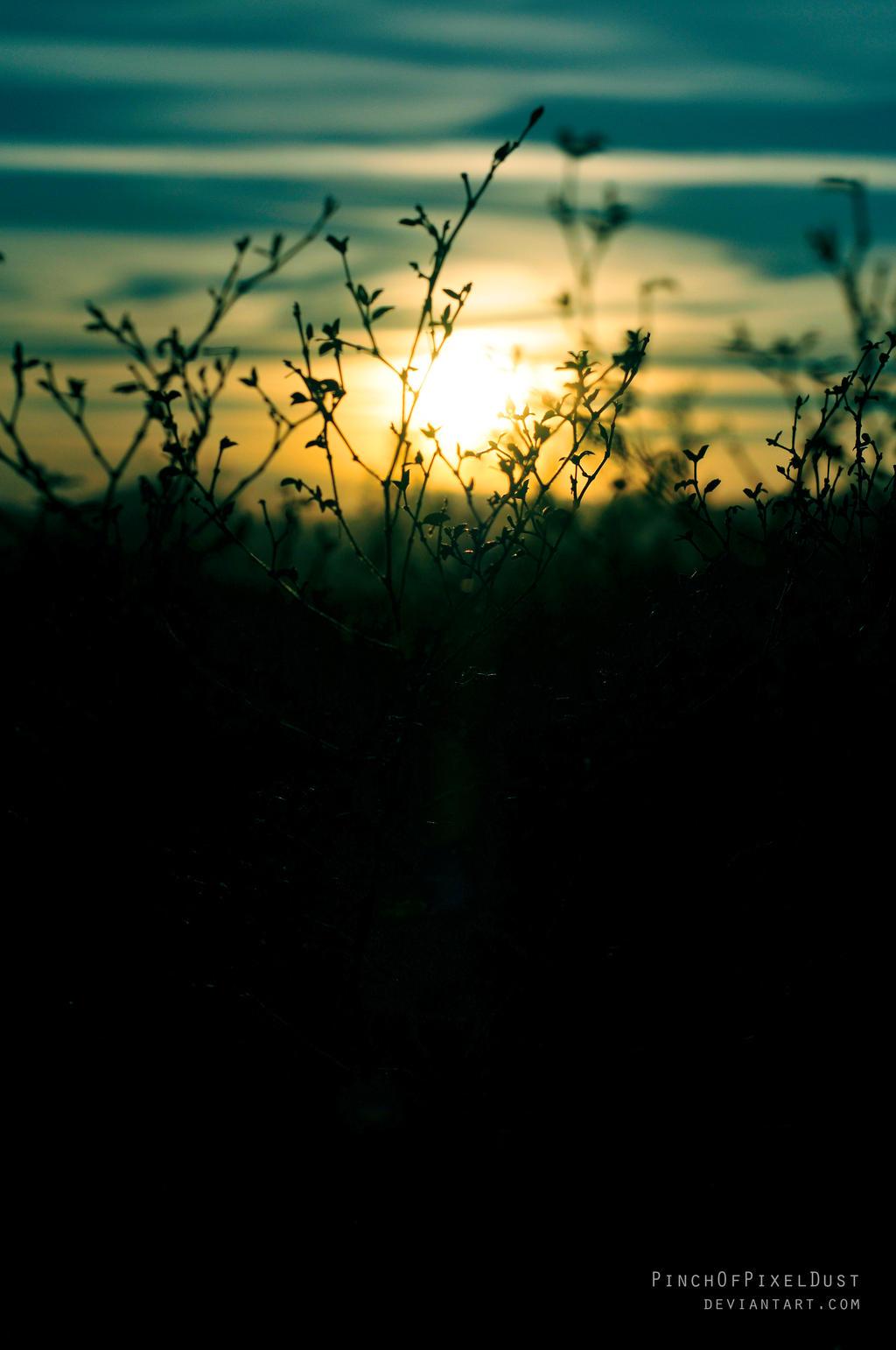 Desert Sunset by PinchOfPixelDust