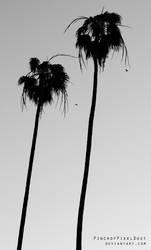 Pair of Palms by PinchOfPixelDust