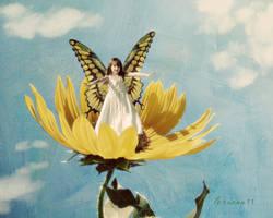 sunflower fairy by imthinkingoutloud