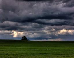 Stormy Weather by wilddoug