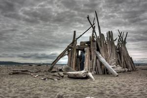 Driftwood Shelter by wilddoug