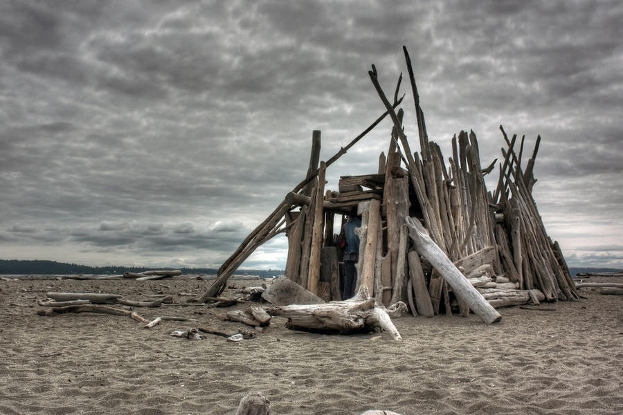 Driftwood Shelter by wilddoug