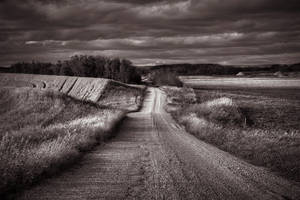 Road Less Travelled by wilddoug