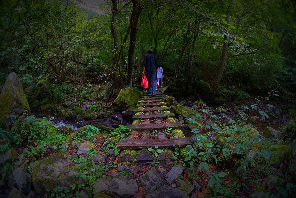 Pilgrimage by MetaAnomie