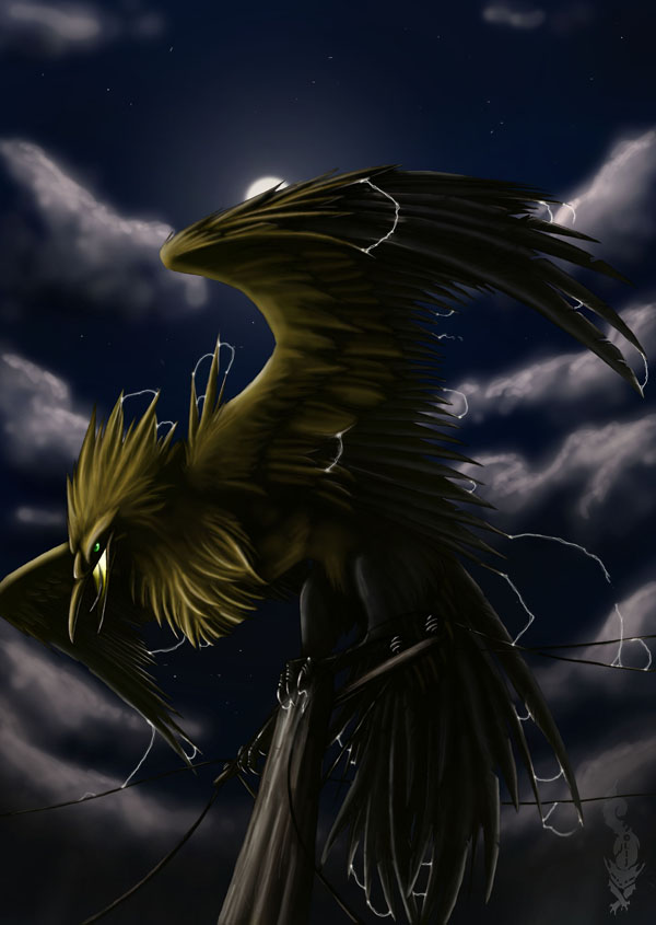 Matt Sparkstar's old and new cards Zapdos_by_greyanimebeast