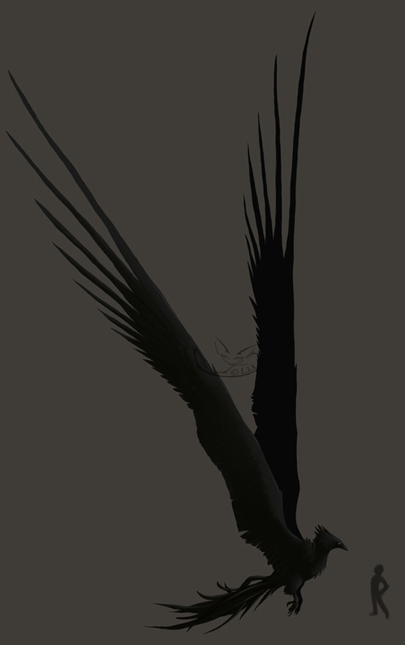 http://orig05.deviantart.net/b547/f/2010/339/2/c/the_stormcrow_by_greyanimebeast-d3496t1.jpg
