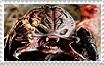 Unmasked Beserker Predator Stamp by Miss-DNL