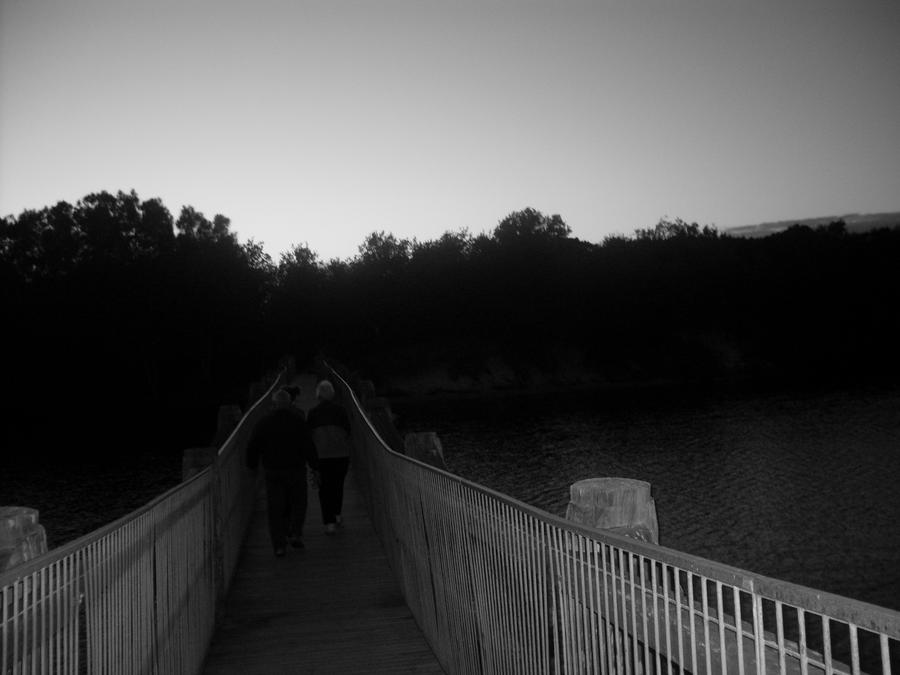Black and White Bridge by Jessawary