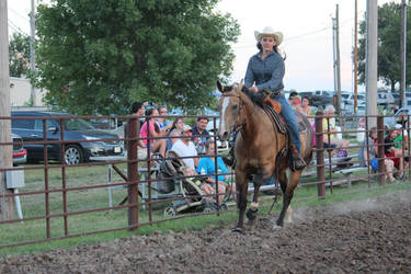 Western Horse Canter - STOCK