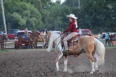 Western Horse 2 - STOCK