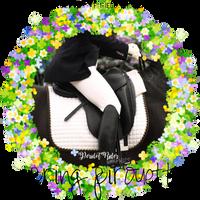 Spring Pirouette