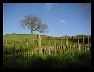 PARBLOB 4: Meadow Fence