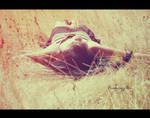 Summer never end