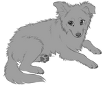 Collie pup lines (P2U)