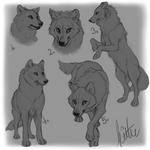 Wolf YCHs (All sold)