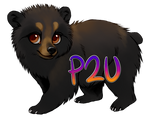 Black Bear (P2U)