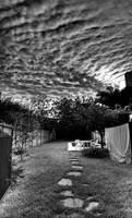 Back Yard HDR by alvarola