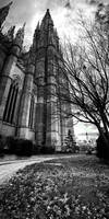 Cathedral Series - Pano