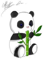 Panda Beary