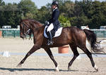 National Dressage and Jumping_38