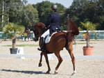 National Dressage and Jumping_72