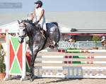 National Dressage and Jumping_99