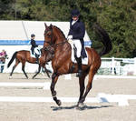 National Dressage and Jumping_109