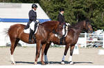 National Dressage and Jumping_177