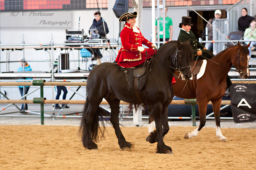 Sidesaddle Friesian_1 by CalyHoney
