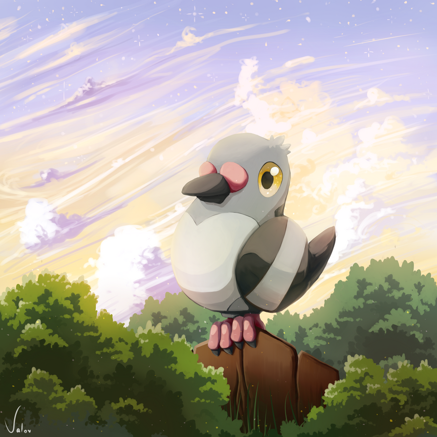 Pokemon Pidove by jkz123pl
