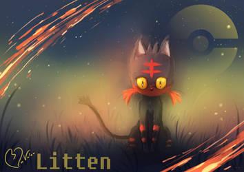 Litten by jkz123pl