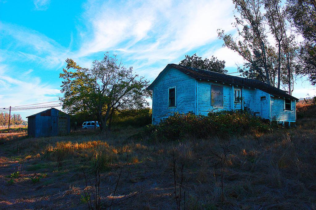 The Blue House by FlashyFashionFraud