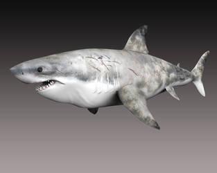 Happy Shark by LDN-RDNT