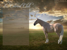 Horseland Layout: The Colored Club by annad3