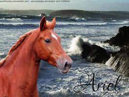 Ariel by annad3