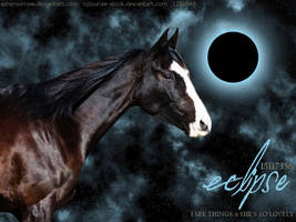 Eclipse by annad3