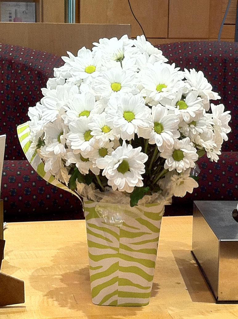 White flower bunch by allyator on deviantart white flower bunch by allyator mightylinksfo